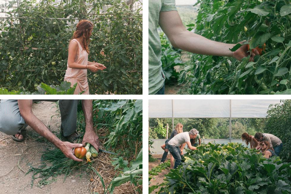 cucinadigitale_garden_2